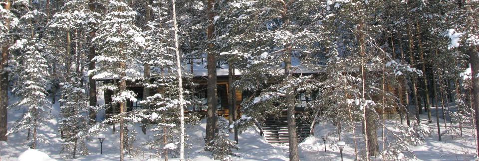 Умный дом в Финляндии.